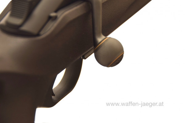 Blaser Kammergriffkugel Stahl graviert mit Goldeinlage
